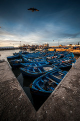 Blue boats in the port of Essaouira, Morocco