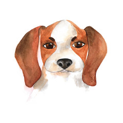 The poster of watercolor portrait BEAGLE