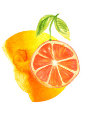Abstract watercolor stain, blot, splash of orange paint. Abstract logo, orange. Fashionable illustration for your design, advertising. Citrus Fruit On A White Isolated Background. Orange fruit.