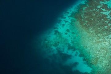 Maldivas reef