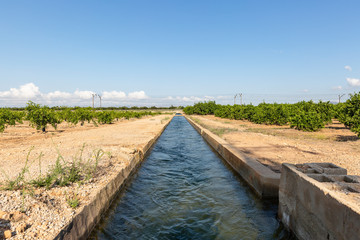 irrigation watercourse canal between Algemesi and Benifaio, province of Valencia, Spain
