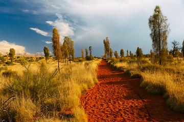 Uluru landscape , Australia