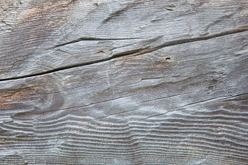 Gray wooden texture. Weathered woodwn wall.