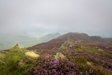 Top of Lingmoor fell mountain with misty view into the valley England