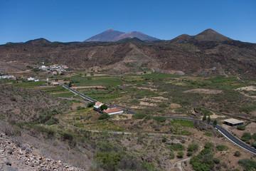 On the island of Tenerife / На острове Тенерифе