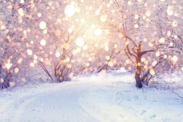 Winter holiday illumination