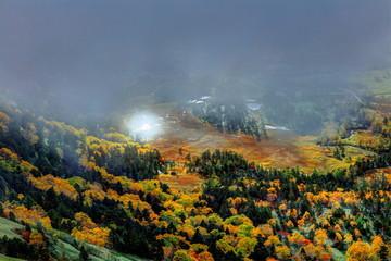 芳ヶ平湿原の秋