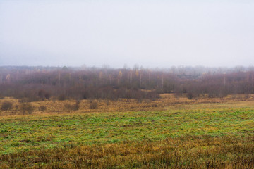 field and hills with dry grass and breeding, the forest is covered with fog, autumn landscape
