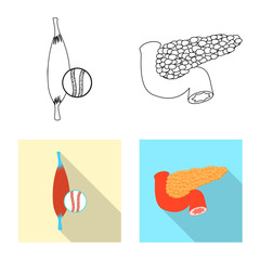 Vector illustration of body and human symbol. Collection of body and medical vector icon for stock.