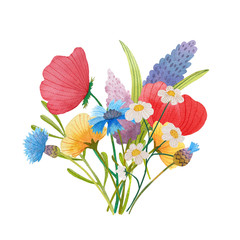flowers poppies watercolor pattern set illustration seamless
