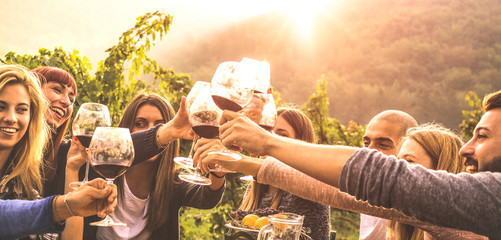Foto op Canvas Wijngaard Young friends having fun outdoors - Happy people enjoying harvest time together at farmhouse winery countryside - Youth and friendship concept - Hands toasting red wine glass at vineyard before sunset