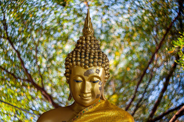 Budha you in fortune Wednesday separated from science background.