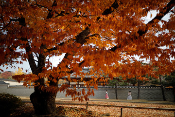 Women wearing the Korean traditional costume Hanbok take photographs on an autumn day at Gyeongbok Palace in central Seoul