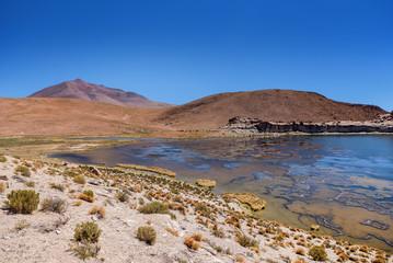 Lagoon and volcano on the plateau Altiplano, Bolivia