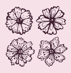 Hand drawn doodle flowers and leaves