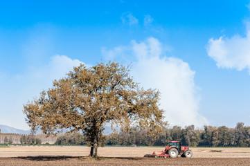 Farm work, harrowing of a field.