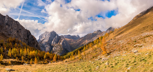 The mountain autumn landscape with colorful forest.