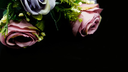 Colorful roses on a black background.