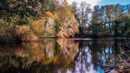 Herbstliche Farben am See