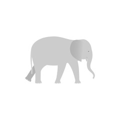 Elephant. Vector. Elephant in flat design. Zoo wild animal isolated. African fauna on white background. Cartoon Illustration.