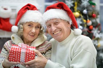 Portrait of a cute senior couple celebrating Christmas
