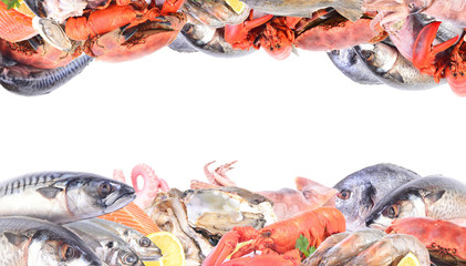 The freshest seafood for every taste