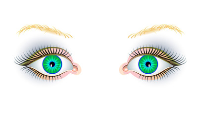 Illustration of beautiful expressive female eyes on white background. Advertising poster for the cosmetics company and a beauty salon. Fashion business publishing. Modern print. Vector cartoon image.
