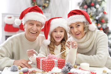 Portrait of a happy family celebrating Christmas