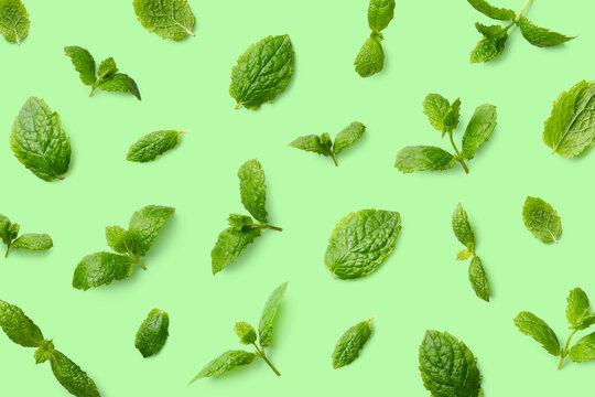 Green pattern of mint leaves