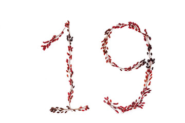 number nineteen is depicted with barberry twigs