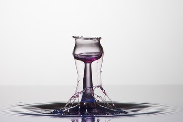 Splash of colorful liquid with high speed flash