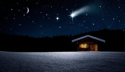 Wall Mural - Weihnachtbaum im Nächtlichen Winterwald