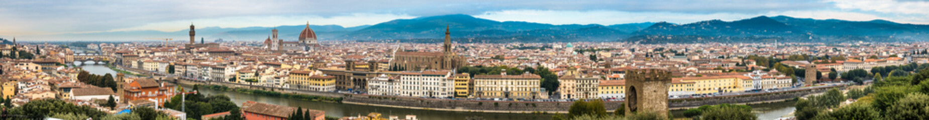 florence - firenze - italy Wall mural