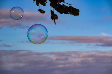 Seifenblasen schweben in den blauen Himmel