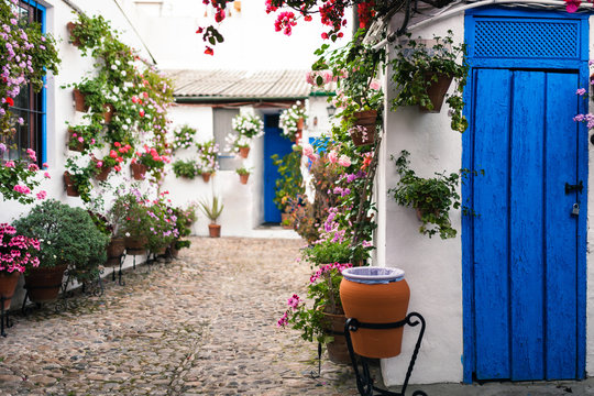 Typical andalusian courtyard in Cordoba, Andalusia Spain
