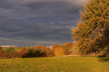 dramatic light and dark sky with scenic autumn landscape