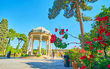 Scenic pavilion through the blooming bougainvillea, Shiaz, Iran