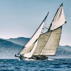 Sailing ship yacht race. Yachting. Sailing. Regatta. Classic sail yachts and sailboats