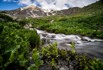 Fototapete - Lush foliage & a pristine river/stream in the Colorado Rocky Mountains.  Handies Peak is shown, a