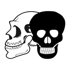 The human skull. Vector black and white illustration of human skull, isolated on white background. Halloween skull set, skeleton head, anatomy