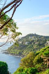 headland at Whale Beach/Avalon, Sydney