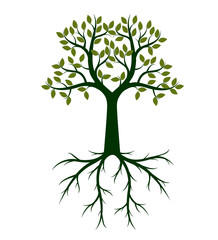 Green shape of  Tree and Roots. Vector Illustration.
