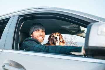 Man riding a car and his beagle dog sit inside near with him