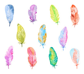 Set of Colorful Watercolor Feathers. Hand Drawn and Painted. Isolated on White Background. Part 2