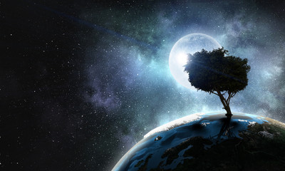 Lonely tree in night
