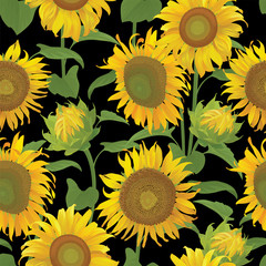 Seamless pattern of sunflowers with leaf on black background. Vector set of blooming floral for holiday invitations, greeting card and fashion design.