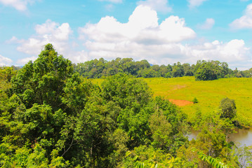 Salt lick for wild elephant animals surrounding with green nature grass land forest mountain landscape blue sky views at Khao yai national park Thailand