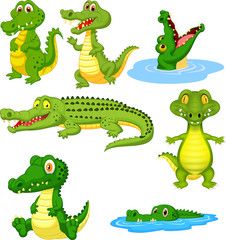 Cartoon green crocodile collection set