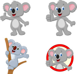 Cartoon happy koala collection set