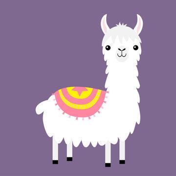 Llama alpaca. Childish collection. Cute cartoon funny kawaii baby character. Fluffy hair fur. Decoration. T-shirt, greeting card, poster template print. Flat design. Violet background.